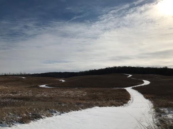trails pic